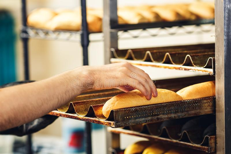 Baker puts hot dog buns on pallets. royalty free stock photos