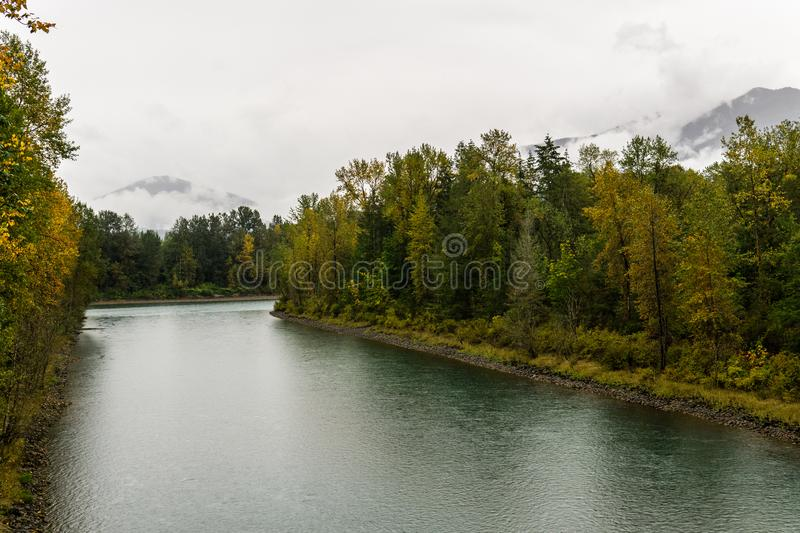 Baker river in a forest at autumn rainy day cloudy sky near Concrete Washington USA. Nature water grass green landscape tree fall outdoor park wood beautiful royalty free stock image
