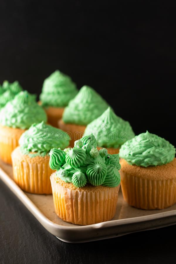 Bakery concept Homemade Sponge vanilla cupcake green tone buttercream on black background with copy space royalty free stock images