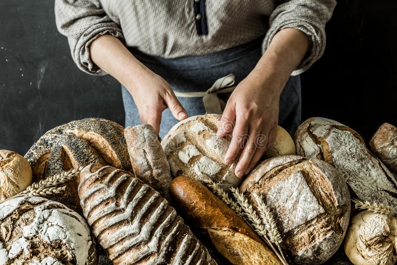 Bakery stall - rustic loaves of bread and shop assistant. Bakery - gold rustic crusty loaves of bread and buns exposed on the stall. Saleswoman shop assistant in stock photography