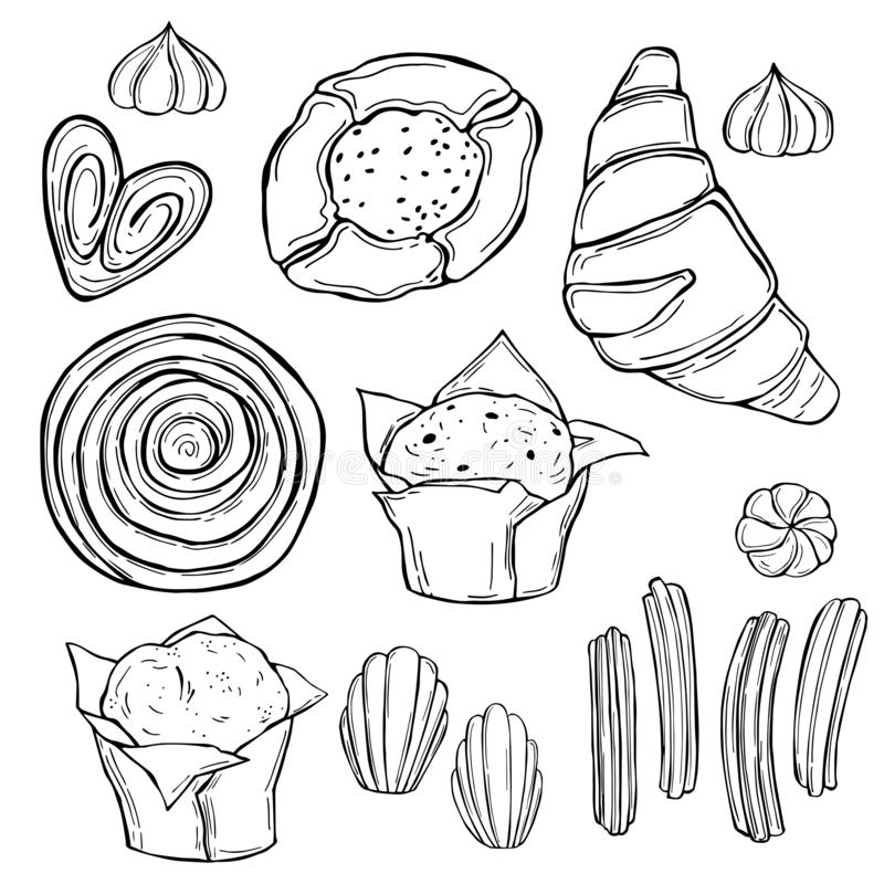 Cookies, muffins. Vector sketch  illustration. Bakery products. Cookies, muffins on white background.  Vector sketch  illustration vector illustration