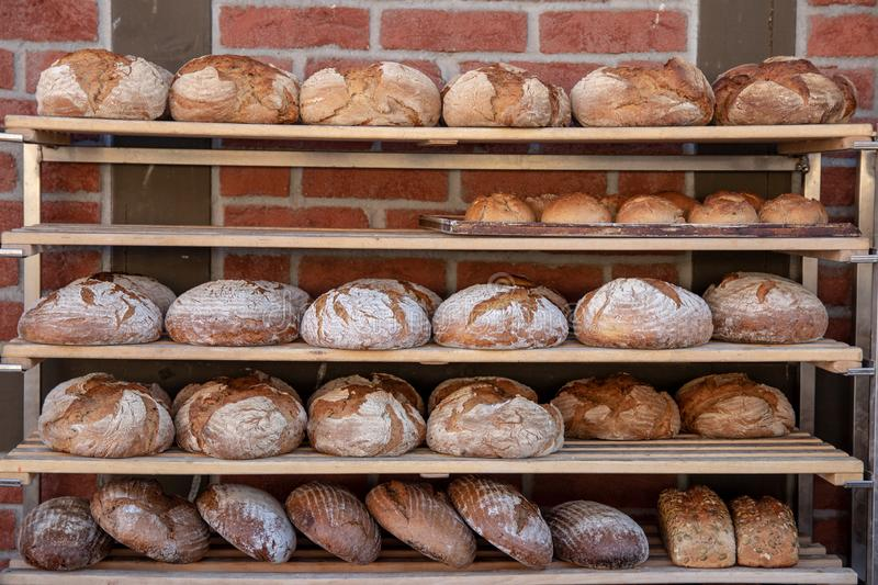 Bakery products. A variety of fresh baked breads in wooden shelves of a country bakery in front of a brick wall. Concept healthy royalty free stock images