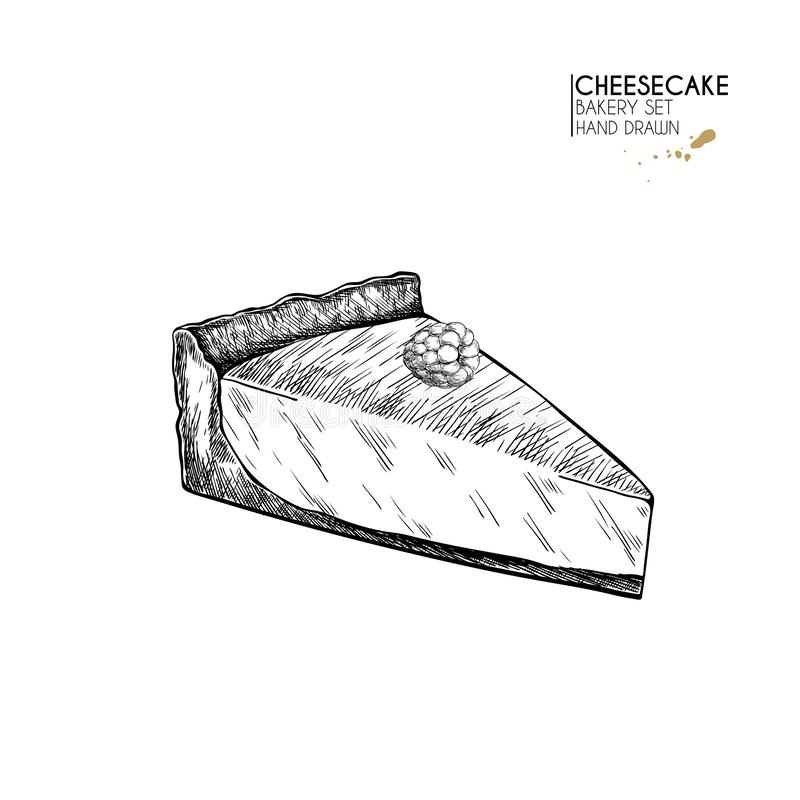 Bakery set. Hand drawn isolated slice of cheesecake. Traditional sweet bakery. Vector engraved icon. For restaurant and. Bakery set. Hand drawn isolated  slice vector illustration