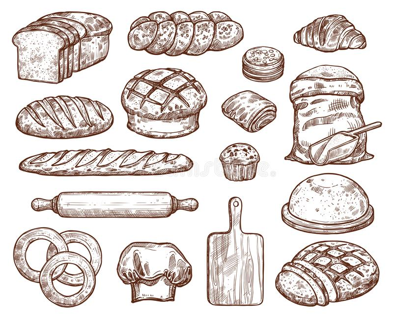 Bakery set with a lot of types fresh bread. royalty free illustration