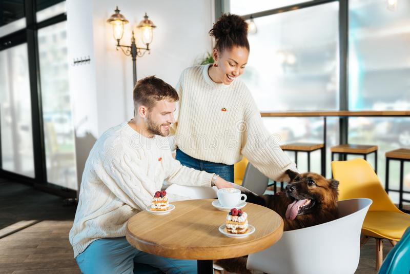 Couple of modern freelancers coming to bakery with their dog. Bakery time. Couple of modern freelancers feeling relaxed while coming to bakery with their dog royalty free stock images