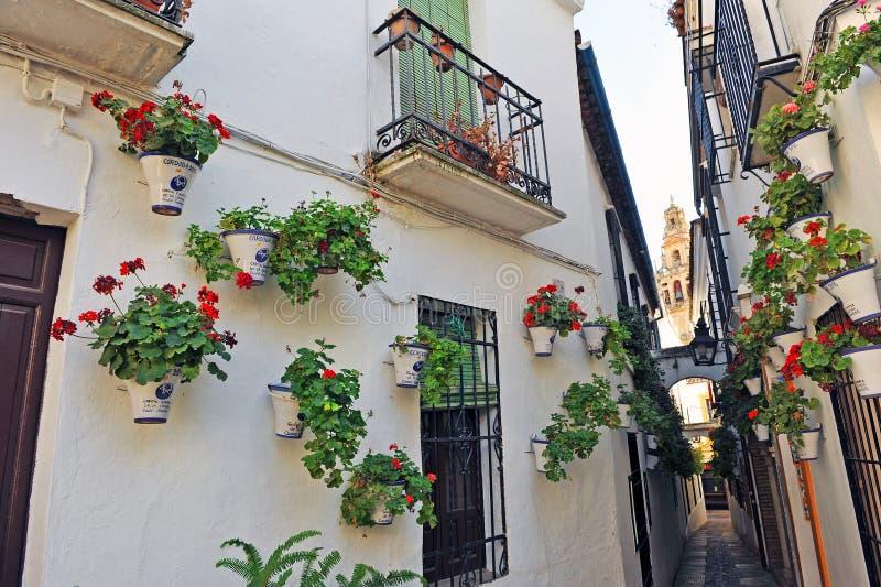 Bakgata från blommorna, Cordoba, Spanien royaltyfri bild