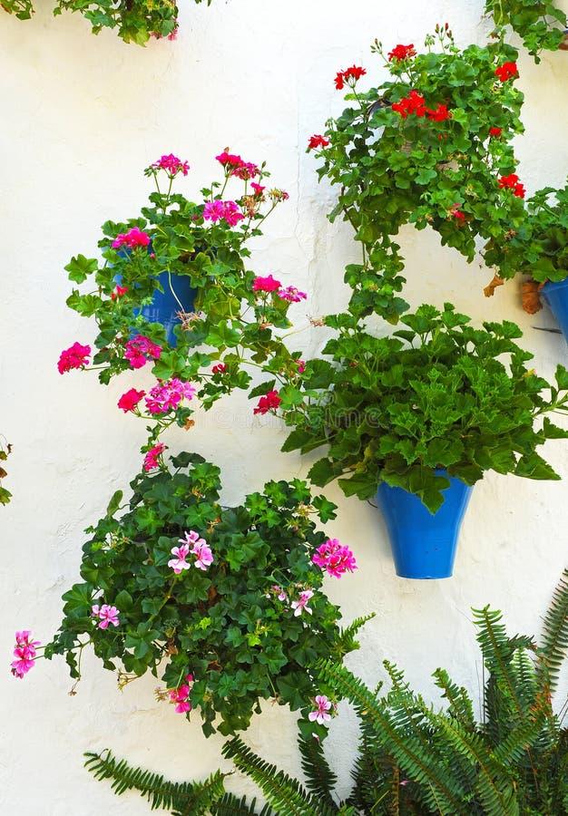 Bakgata från blommorna, Cordoba, Spanien arkivbild