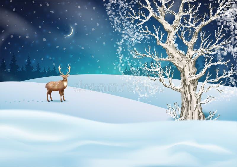 bakgrund är kan jul, designillustration somnatten använde ditt vektor illustrationer