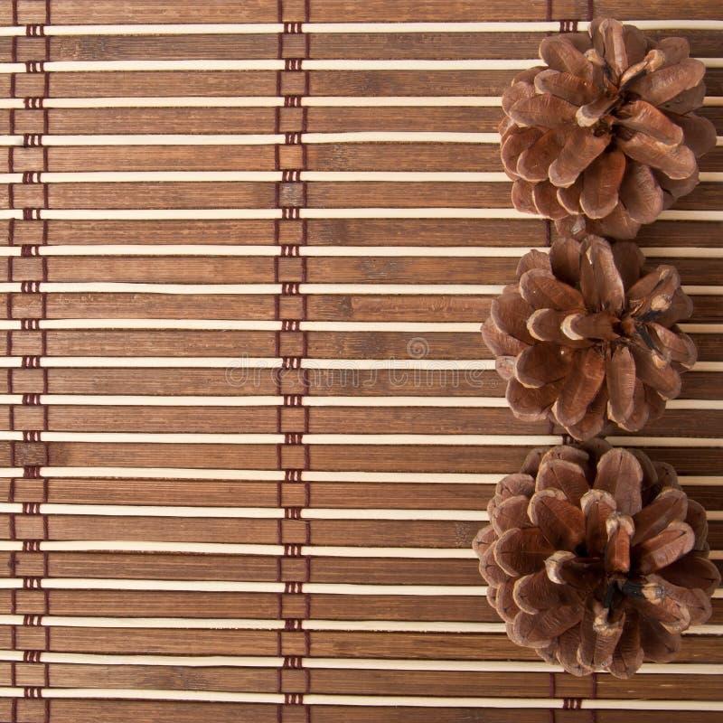 Download Bakgrund av bambu arkivfoto. Bild av sörja, reproducera - 27288028