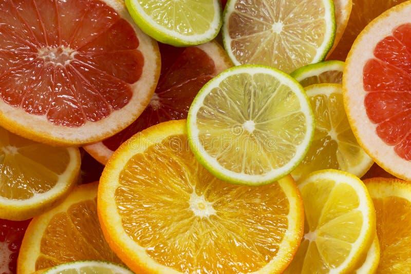 Bakgrund av citruns fotografering för bildbyråer