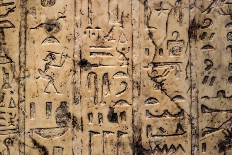 Bakgrund av den egyptiska hieroglyfer som snidas i vertikala rader in i elfenben royaltyfri bild