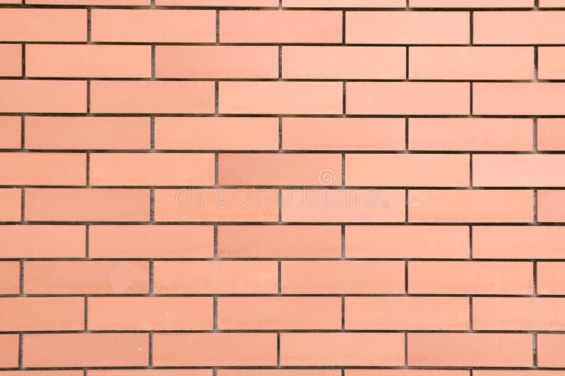 Bakgrund av den nya tegelstenväggen royaltyfri foto