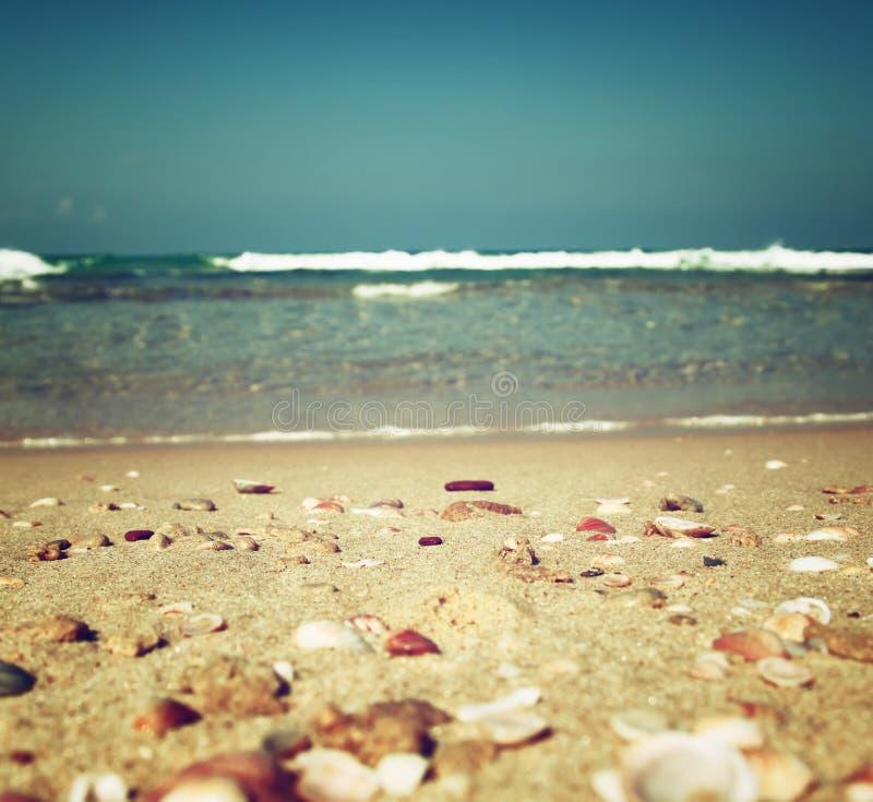 Bakgrund av den suddiga stranden och havet vinkar, tappningfiltret royaltyfri bild