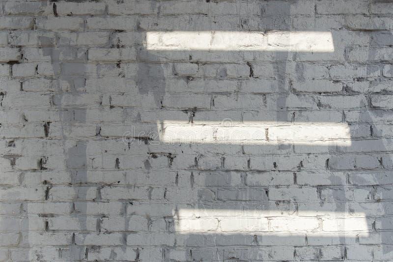 Bakgrund av för tegelstenvägg för gammal tappning vit textur med vita linjer av ljus royaltyfria bilder