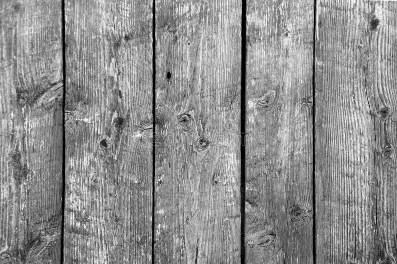 Bakgrund av fem lodlinjeladugårdbräden b/w royaltyfri foto