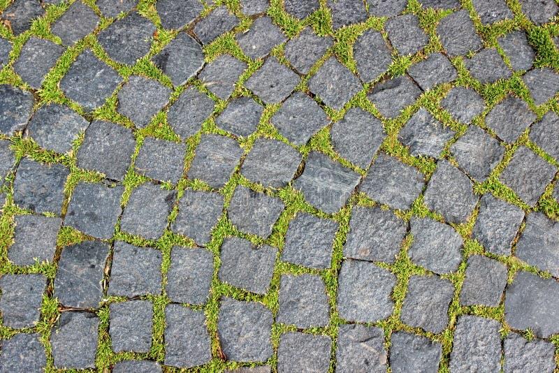 Bakgrund av granitpavers och grönt gräs gör dess vägbetwe royaltyfria bilder