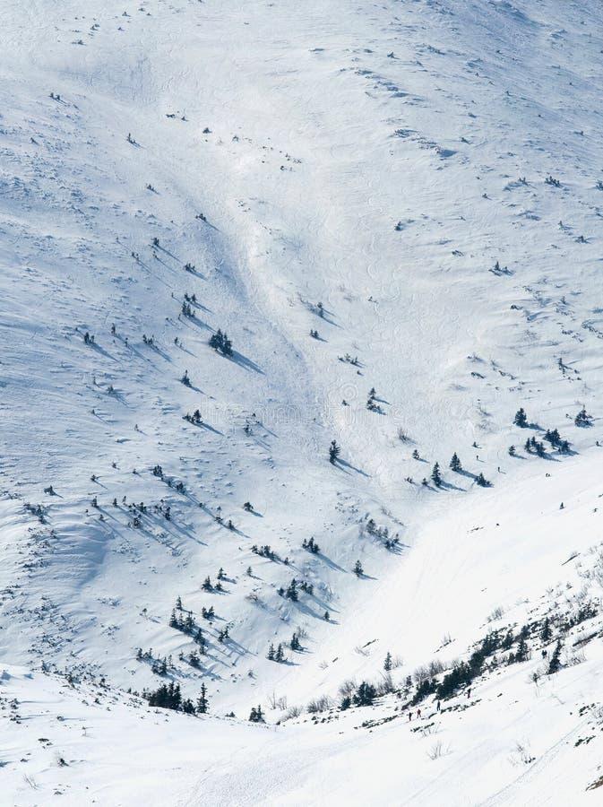 Bakgrund av kullen med landskap för snötexturvinter arkivbilder