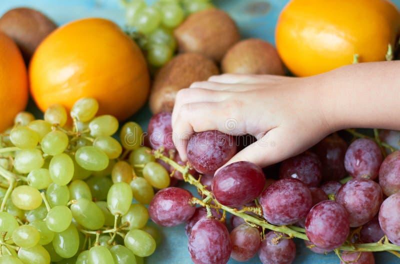 Bakgrund av saftiga frukter arkivfoto