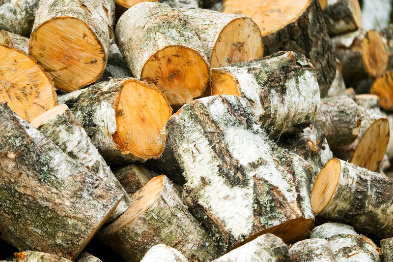 Bakgrund av träsnittvedträt arkivfoton