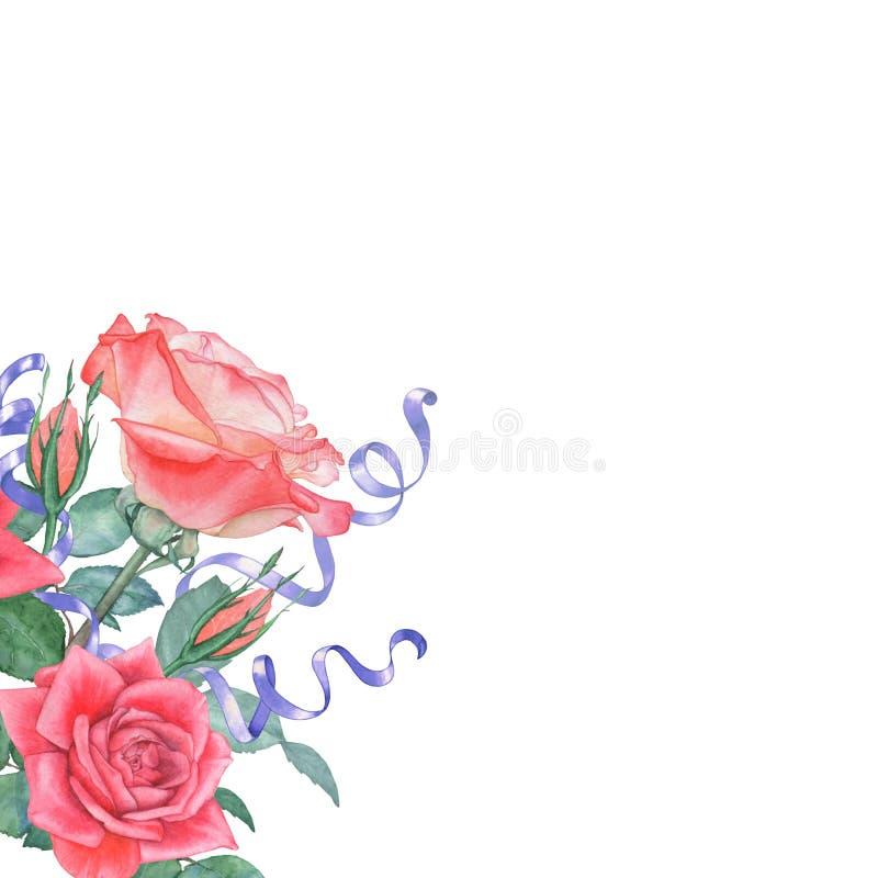 Bakgrund av vattenfärgrosor och satängband Göra perfekt för att gifta sig inbjudningar och hälsningkort royaltyfri illustrationer