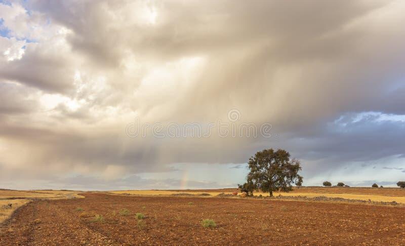 Bakgrund bildade vid ett landskap av ockraländer under en molnig himmel och en liten regnbåge i bakgrunden arkivbild