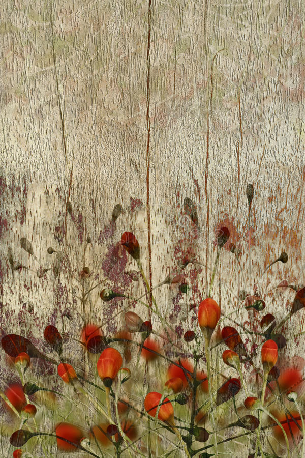 bakgrund blommar grungeredträ arkivbild