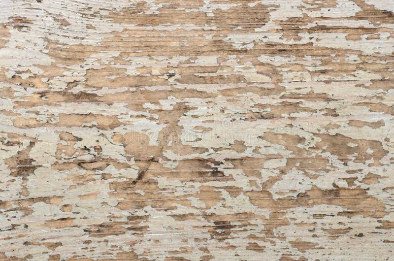bakgrund boards gammalt trä royaltyfria bilder