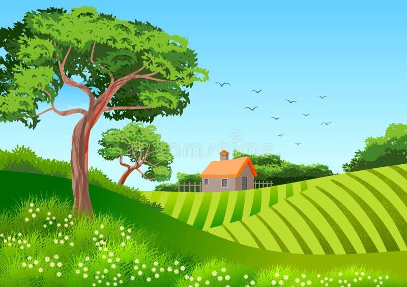 Bakgrund eller tapet med illustrationen med naturligt landskap Träd, kultiverade fält och en stuga stock illustrationer