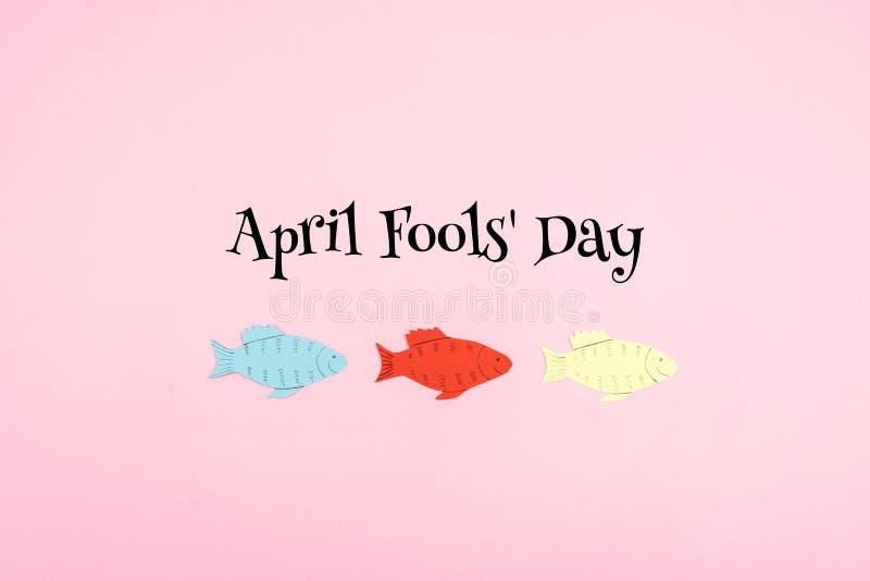 Bakgrund för April Fools 'dagberöm med pappersfisken och text på rosa bakgrund Alla dumbommars dag, blidkar, ofoget, skämtbegrepp fotografering för bildbyråer
