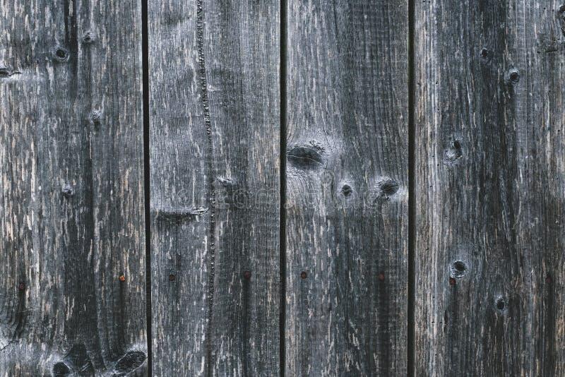 Bakgrund för återloppsvirke Konstruktion för årgång träpapperstext Naturligt mönster Grå grunge plank Mall för grå träbord, b arkivbild