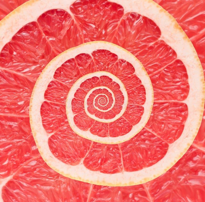 Bakgrund för abstrakt begrepp för grapefruktoändlighetsspiral. royaltyfri foto