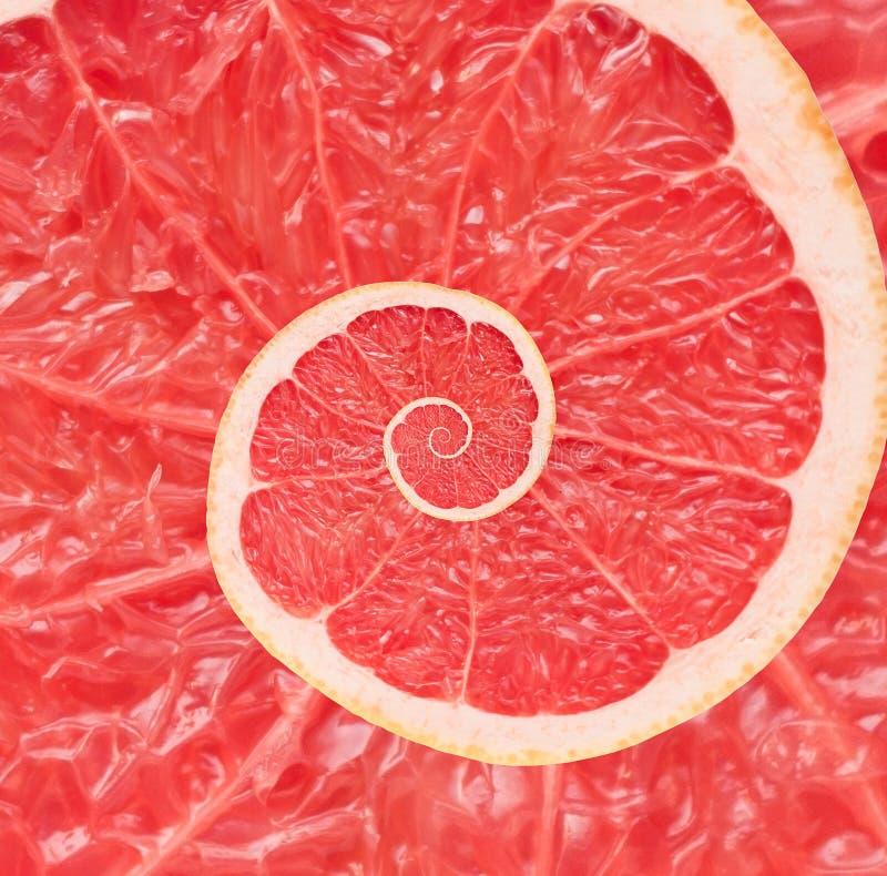 Bakgrund för abstrakt begrepp för grapefruktoändlighetsspiral arkivbild