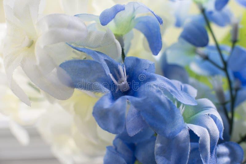 Bakgrund för blått för fantasi försiktig vit blom- och royaltyfri bild