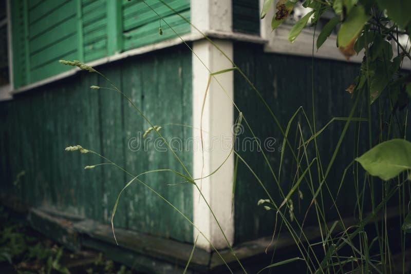 bakgrund för bokeh för dag för sommar för gräs för vägg för gräsplan för arkitektur för byhusdetaljer utomhus- arkivbilder