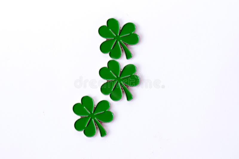 Bakgrund för dag för St Patrick ` s för design med växt av släktet Trifolium isolerad white för bakgrund växt av släkten Trifoliu arkivbilder