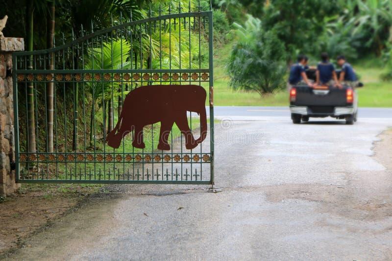 Bakgrund för gata och för natur för elefantporthus royaltyfria foton