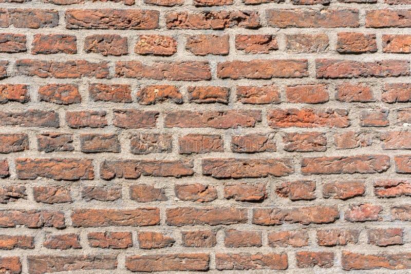 Bakgrund för grunge för textur för väggen för röd tegelsten, kan använda för inredesign royaltyfria foton