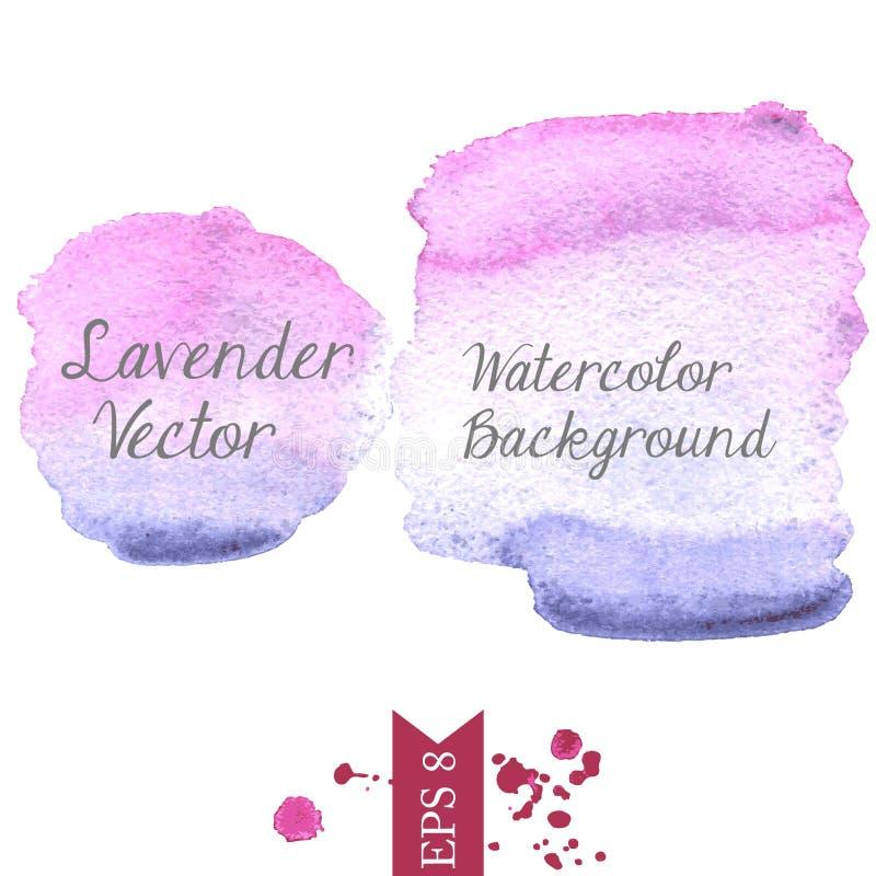 Bakgrund för lavendelvattenfärgvektor royaltyfri bild