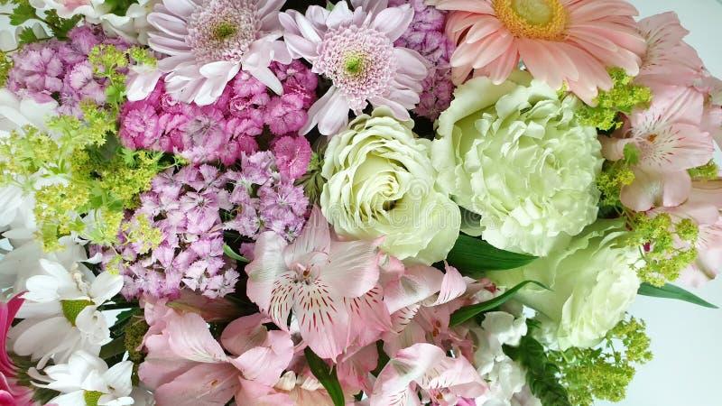 Bakgrund för lila för härlig anstrykning för blommabukettanstrykning färgrik röd rosa gul grön blom- för kvinnan da för bröllop f royaltyfri bild
