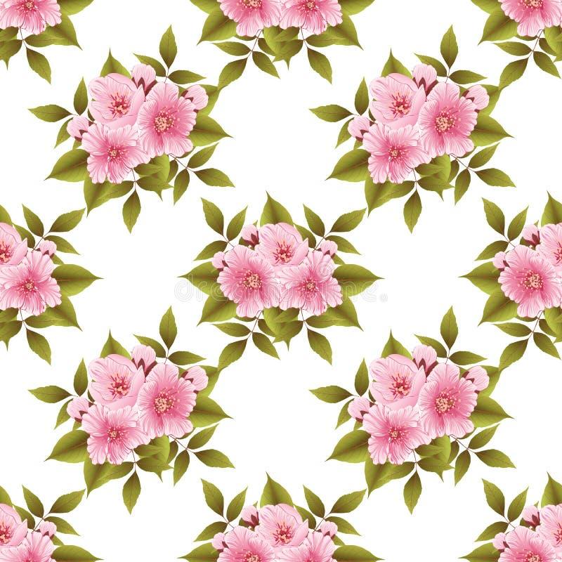 Bakgrund för modell för vektorsakura blomma sömlös Elegant textur för körsbärsröd blomning för bakgrunder stock illustrationer