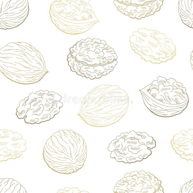 Bakgrund för modellen för grafisk färg för valnöten skissar sömlös illustrationvektorn royaltyfri illustrationer