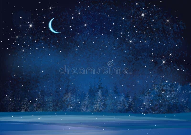 Bakgrund för natt för vektorvinterunderland royaltyfri illustrationer