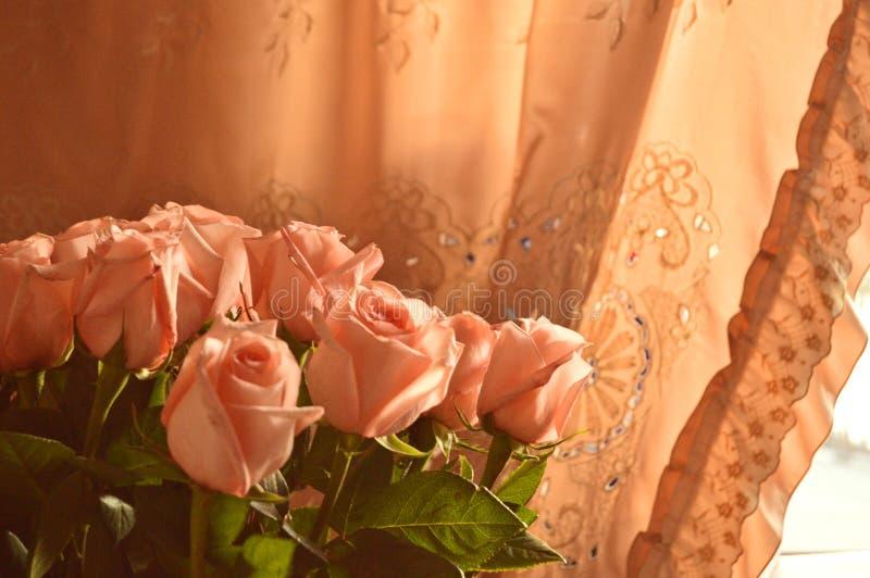 Bakgrund för Rose Many Gentle Pink Buds kronbladbukett fotografering för bildbyråer