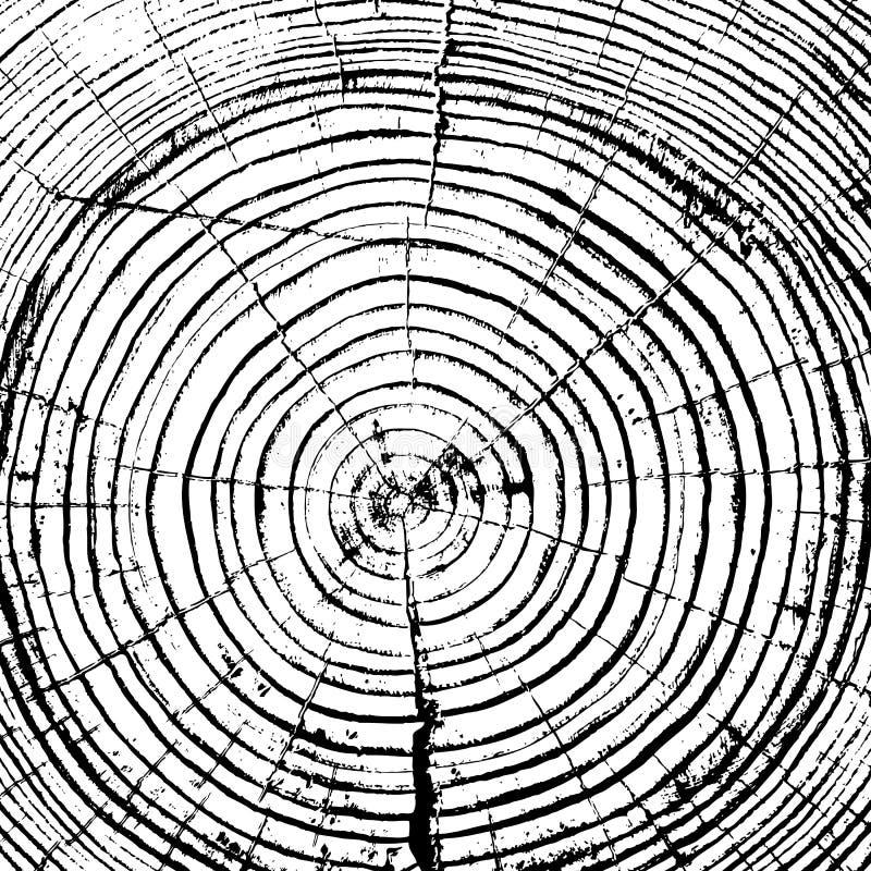 Bakgrund för stam för träd för snitt för såg för trädcirklar royaltyfri illustrationer