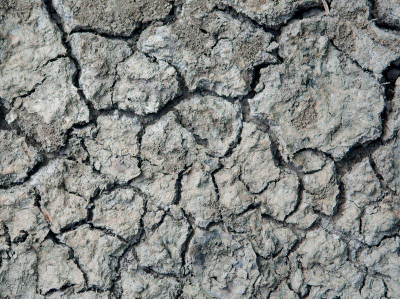 Bakgrund för textur Craked för torr jord fotografering för bildbyråer