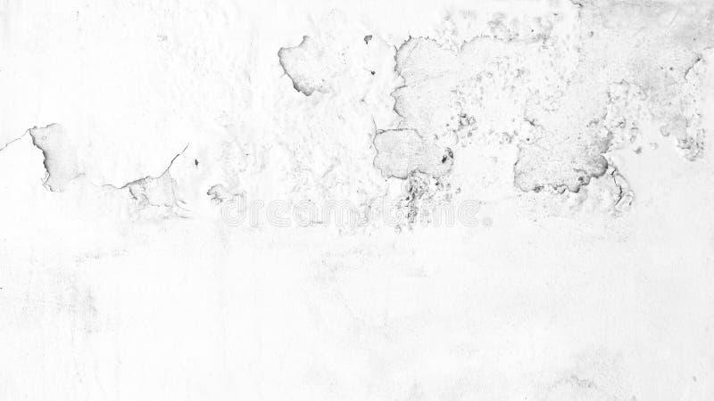Bakgrund för textur för vägg för Grungebetongcement royaltyfria bilder