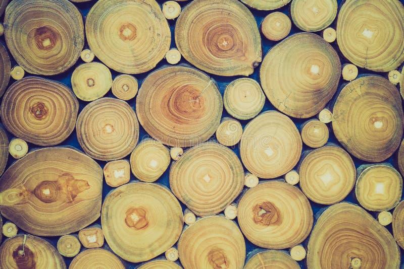 Bakgrund för trädcirklar arkivbilder