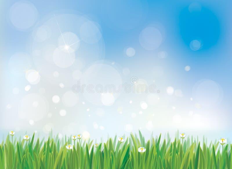 Bakgrund för vektorvårnatur, blå himmel och grönt gräs vektor illustrationer