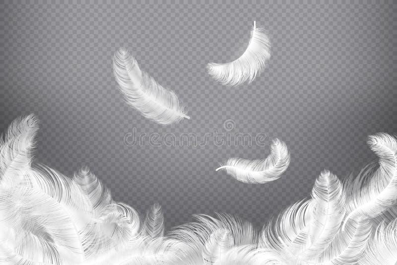 Bakgrund för vit fjäder Closeupfågel- eller ängelfjädrar Att falla som är tyngdlöst, putsar Dröm- illustration stock illustrationer