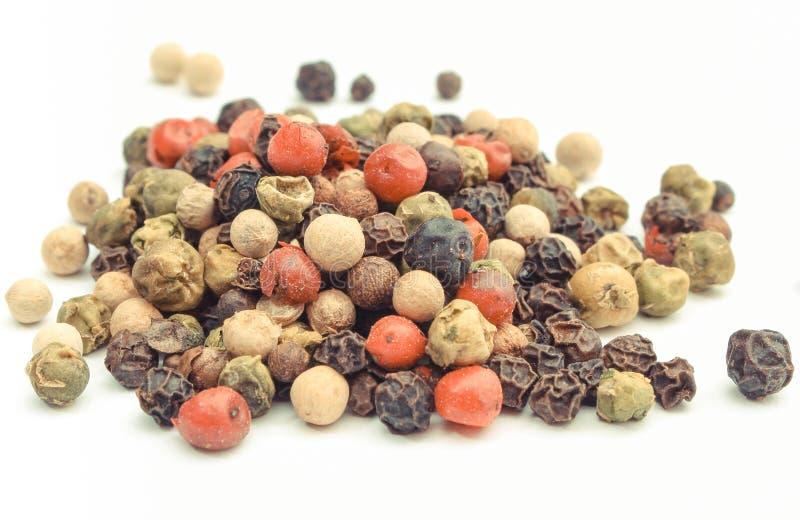 bakgrund f?rgad pepparwhite laga mat krydda fotografering för bildbyråer